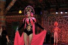 Lnyanaya_Palitra_2014_Ples_04